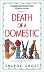 Death of a Domestic Diva (Stain Busting, Bk 1)
