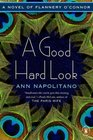 A Good Hard Look A Novel of Flannery O'Connor