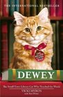 Dewey The Smalltown Librarycat Who Touched the World