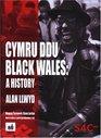 Cymru Ddu / Black Wales A History