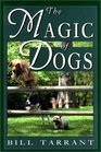The Magic of Dogs