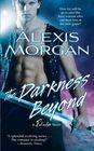 The Darkness Beyond (Paladins, Bk 8)
