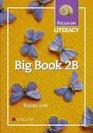 Focus on Literacy Big book 2B