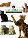 Identifying Cat Breeds The New Compact Study Guide and Identifier