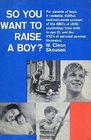 So You Want to Raise a Boy