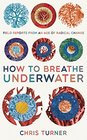 How to Breathe Underwater Field Reports from an Age of Radical Change