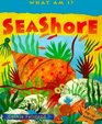 Seashore PopUp Surprises