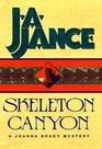 Skeleton Canyon (Joanna Brady, No 5)