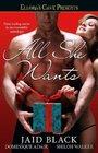 All She Wants: Holly / Adam & Evil / His Christmas Cara