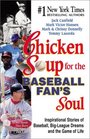 Chicken Soup for the Baseball Fan's Soul  Inspirational Stories of Baseball BigLeague Dreams and the Game of Life