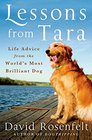Lessons from Tara Life Advice from the World's Most Brilliant Dog
