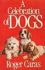 Celebration of Dogs