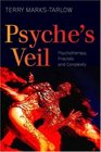 Psyche's Veil Psychotherapy Fractals and Complexity