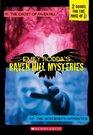 The Ghost of Raven Hill / The Sorcerer's Apprentice (Raven Hill, Bks 1-2)