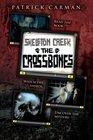 Skeleton Creek 3 The Crossbones
