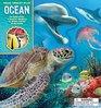 Read Build Play Ocean