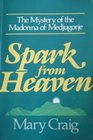 Spark from Heaven The Mystery of the Madonna of Medjugorje