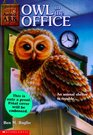 Owl in the Office (Animal Ark, Bk 11)