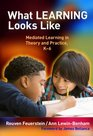 What Learning Looks Like Mediated Learning in Theory and Practice K6