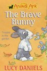 The Brave Bunny