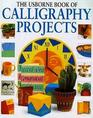 The Usborne Book of Calligraphy Projects
