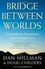 Bridge Between Worlds Extraordinary Experiences That Changed Lives