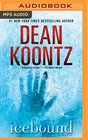 Icebound A Novel