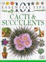 101 Essential Tips Cacti  Succulents