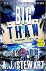 Big Thaw (Miami Jones, Bk 14)