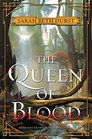 The Queen of Blood Book One of The Queens of Renthia