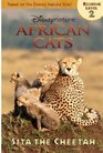 African Cats Sita the Cheetah