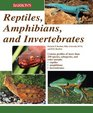 Reptiles Amphibians and Invertebrates An Identification and Care Guide