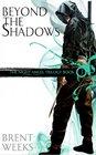 Beyond the Shadows (Night Angel, Bk 3)
