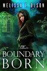 Boundary Born