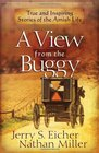 A View from the Buggy True and Inspiring Stories of the Amish Life