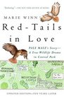Red-Tails in Love  A True Wildlife Drama in Central Park