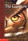 Guardians of Ga'Hoole series  The Capture