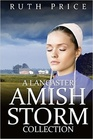 A Lancaster Amish Storm Collection