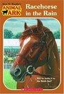 Racehorse in the Rain