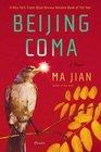 Beijing Coma: A Novel