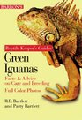 Green Iguanas Facts  Advice on Care and Breeding