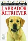 Dog Breed Handbooks Labrador Retriever