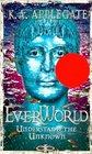 Understand The Unknown (Everworld, Bk 10)