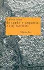 Laberinto de Sueno y Angustia / Labyrinth of Dream and Anguish