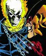 Marvel Comics Presents Wolverine Vol 4