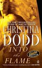 Into the Flame (Darkness Chosen, Bk 4)