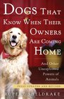 Dogs That Know When Their Owners Are Coming Home Fully Updated and Revised