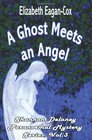 A Ghost Meets an Angel: Shannon Delaney Paranormal Mystery Series (Volume 3)