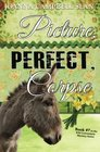 Picture Perfect Corpse Book 7 in the Kiki Lowenstein Mystery Series