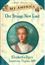 Our Strange New Land, Elizabeth's Jamestown Colony Diary, Book One (My America)